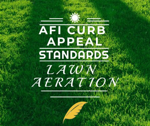 AFI Curb Appeal Standards: Lawn Aeration & Over-Seeding